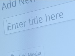 How To Create A Newsfeed For WordPress Website