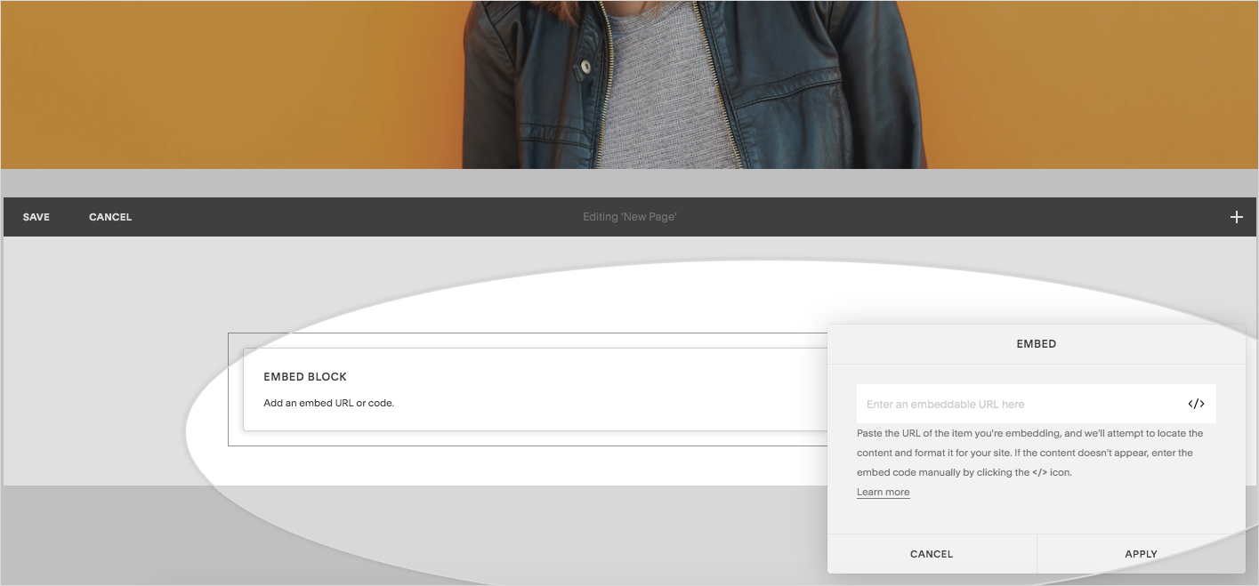 Preview of pasting embed code in squarespace website